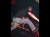 spermbirds-jump-01