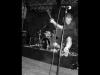 spermbirds-jump-04